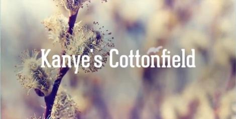 Kanye's Cottonfield