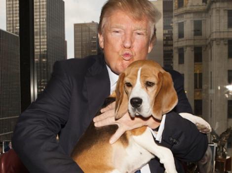 Donald-Trump.png